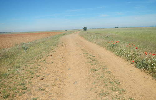 The Roman Road low-res