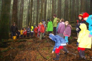 Wilson Creek forest kids hike Nov 2012 025 low-res