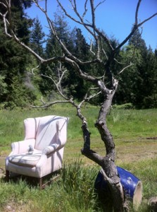 chair and tree low-res