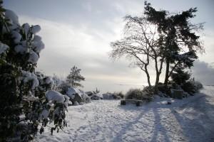 winter-scene-rc-pier-entrance-low-res